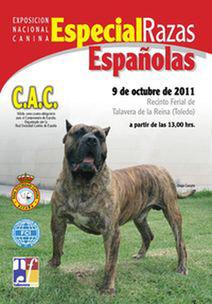 EXPOSICIÓN NACIONAL CANINA ESPECIAL RAZAS ESPAÑOLA