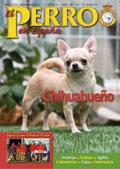 boletin n35 el perro en España