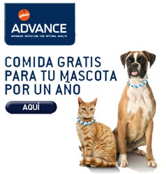 Affinity advance sorte cada mes comida gratis durante 1 año