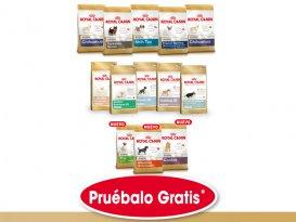 Prueba gratis los productos de alimentación para cachorros de raza con Ro