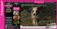 eukanuba tv