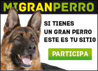 migranperro de royal canin