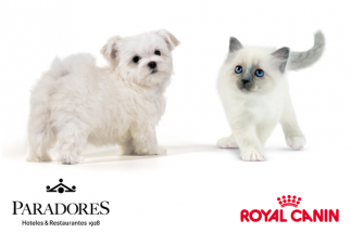 promoción paradores y royal canin