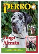 BOLETIN INFORMATIVO RSCE Nº 37, EL PERRO EN ESPAñA, DOGO ALEMAN